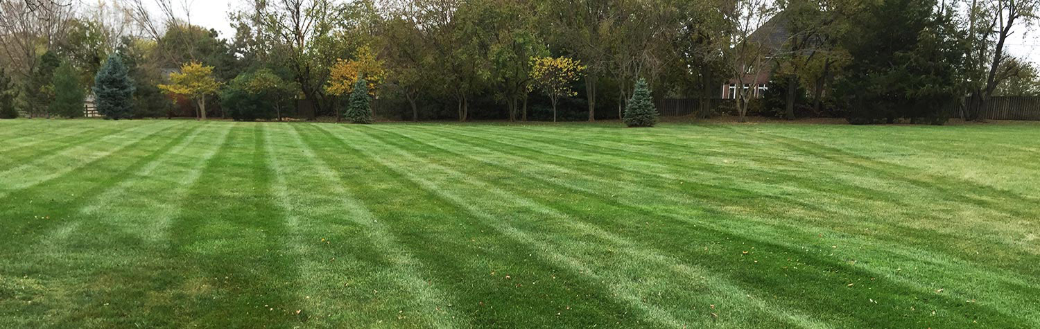 lawn maintenance in overland park